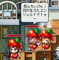 tomato1.jpg