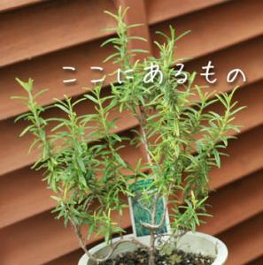 gardening014.jpg