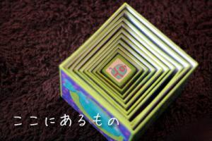 kenta_009.jpg