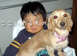 kenta_011.jpg