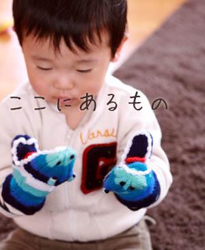 kenta_017.jpg