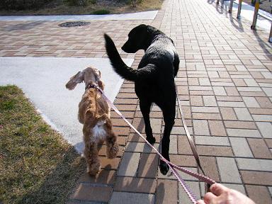 アタシの横歩いてたら大丈夫やからなっ!