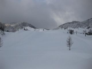 201002131_snow