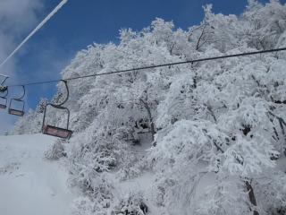 201002136_snow