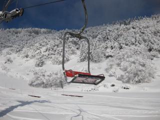 201002138_snow