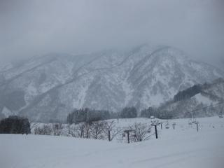 201002211_snow