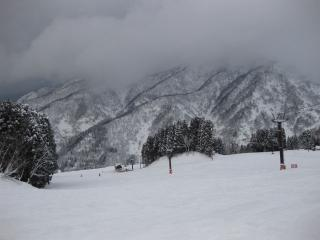 201002212_snow