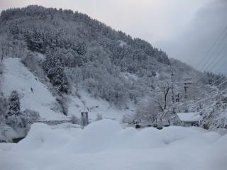 201002222_snow
