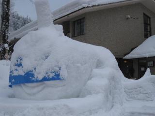 201002227_snow