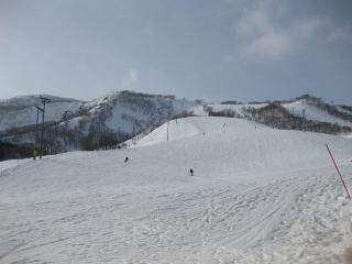 201003081_snow