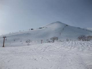 201003084_snow