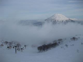 201003086_snow