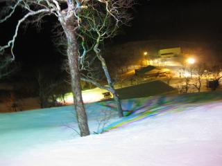 201003095_night