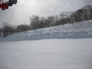 201003142_snow