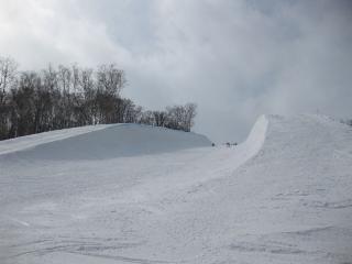 201003151_snow