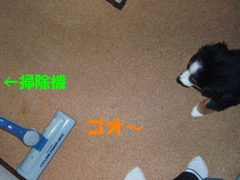 2008_0928_132235-P9280023.jpg
