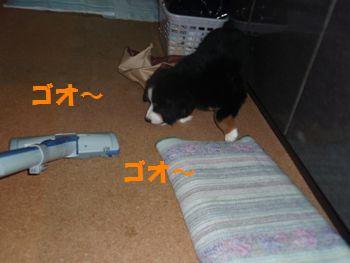 2008_0928_132253-P9280025.jpg