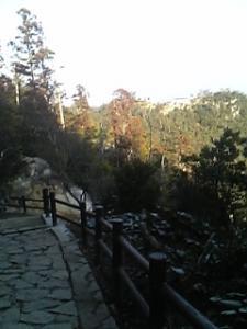 20090119174607