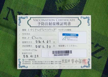 ワクチンというか予防接種