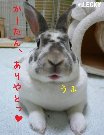 s1190034.jpg