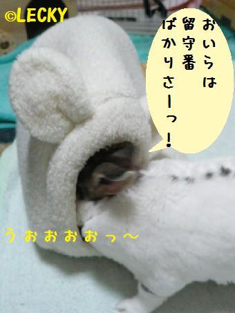 s1190284.jpg