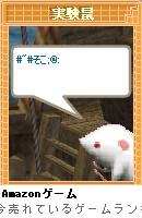 20070109_04.jpg