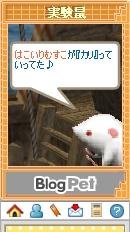 20070109_05.jpg