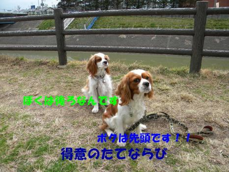 DSCN6646a.jpg