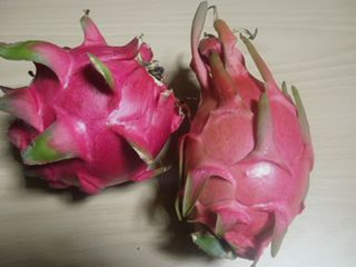 Dragon Fruit (Melanger)