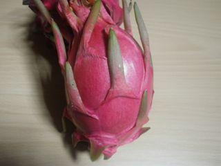 Dragon Fruit (Blanc)