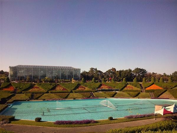 フラワーパーク 噴水広場からの景色
