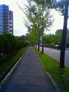 NEC_2037.jpg