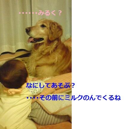 20110503171339.jpg