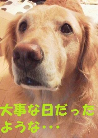 2011111107330001.jpg