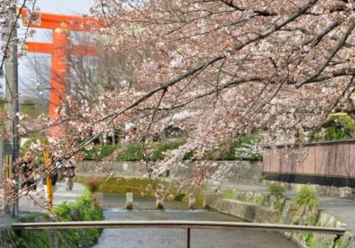 京都市の細い橋