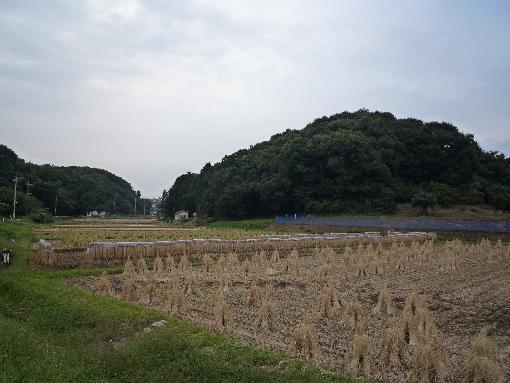 恩田の谷戸