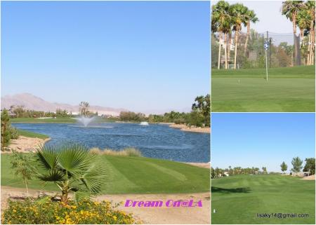 Collage_golf1