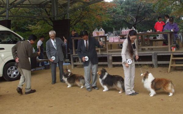 2010akihirosimab.jpg
