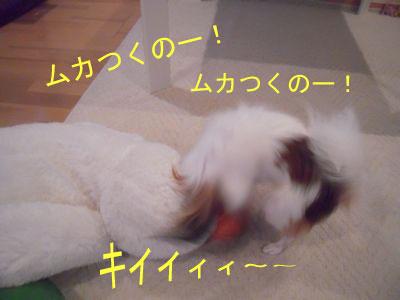 gazou-106.jpg