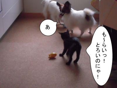gazou-182.jpg