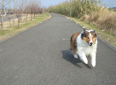 綺麗な足で走るリズ