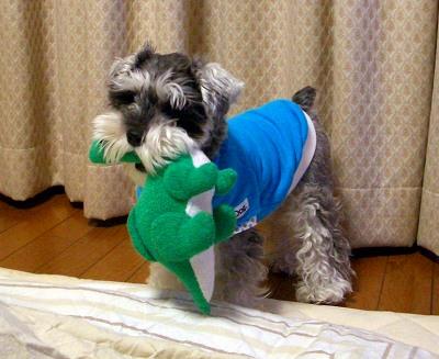 リズから奪い取った恐竜を咥えるサラ