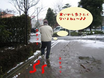 20080203yuki5.jpg
