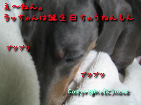 20080503-5.jpg