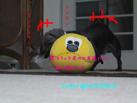 20080515-1-111.jpg