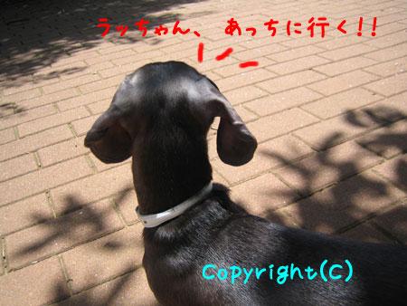 20080602-2-222