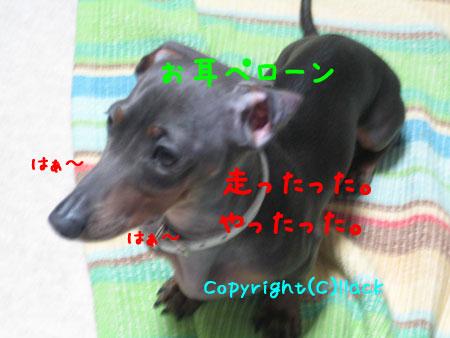 20080612-1-111