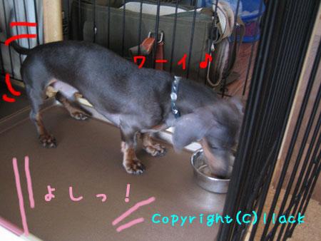 20080714-5-444.jpg