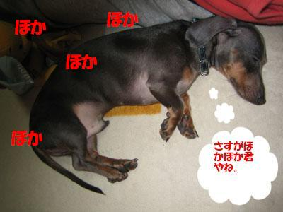 IMG_1569080128.jpg