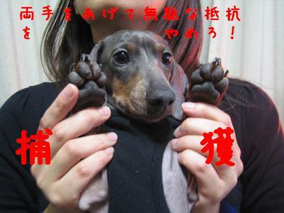 IMG_1643444.jpg